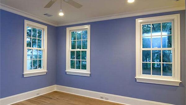 Chandler Single Hung Windows
